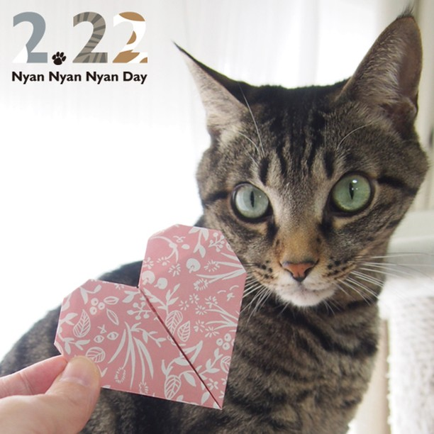 You are my Purrfect Valentine. Be my catnip