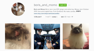 Boris_and_Momo Instagramリンク画像
