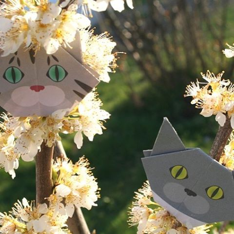 "Climbing on a peach tree. 桃の木に登ったよ♪ ️Check out ""Catchy-boutique"" in our URL.#cat #neko #catsofinstagram #origami #cat2see#catlovers#cat_features#catworldwide#excellent_cats#catstagram#nyanstagram#lovemeow#ig_catclub#World_kawaii_cat#instacat_meows#TopCatPhoto#igbest_cats#cutepetclub#igcutest_animals#topcatoftheday#cats_of_world #shopify#peachtree #flowers"