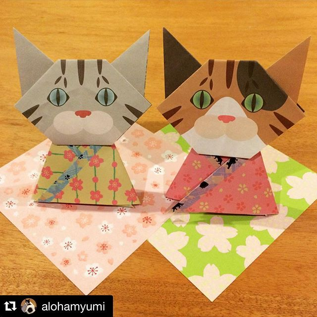 梅杏おひなさま作り方はこちら↓http://catchy-boutique.com/blogs/events-in-japan#Repost @alohamyumi with @repostapp.・・・猫おりがみのお雛様を作ったよ〜♡#catchy_boutique #catchy_business #猫おりがみ #お雛様