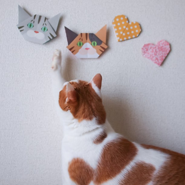 Mmmm! I can't reach! (Catchy Cat Origami can transform into cute DIY home Decor, too)うーん、手が届かないっ!(猫折り紙は壁に貼っても素敵なインテリアに)http://catchy-boutique.com/#折り紙 #originalproduct #paperart #origamicat #papercat #paperfolding #catchyboutique #shopify