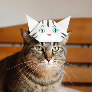 origami-cat-childrens-day