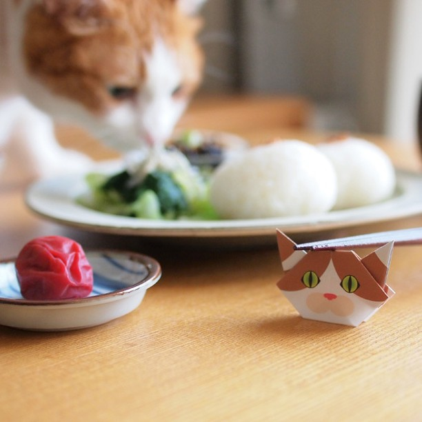 "Oh my! She is going to nibble on your food!!Catchy mini Origami can transform into chopstick rests, too.Make mini when you need them.大変!つまみ食いしてる人がいまーす! ミニ折り紙は、箸置きにもなります.️Check out ""Catchy-boutique"" in our URL.#chopsticks"