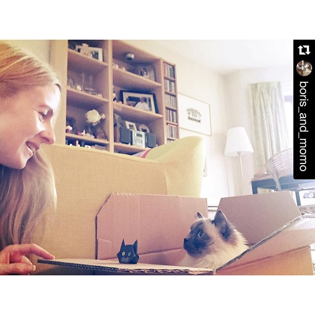 Thank you @boris_and_momo for posting lovely photo of mini cat origami, Boris and beautiful mom!..#repost