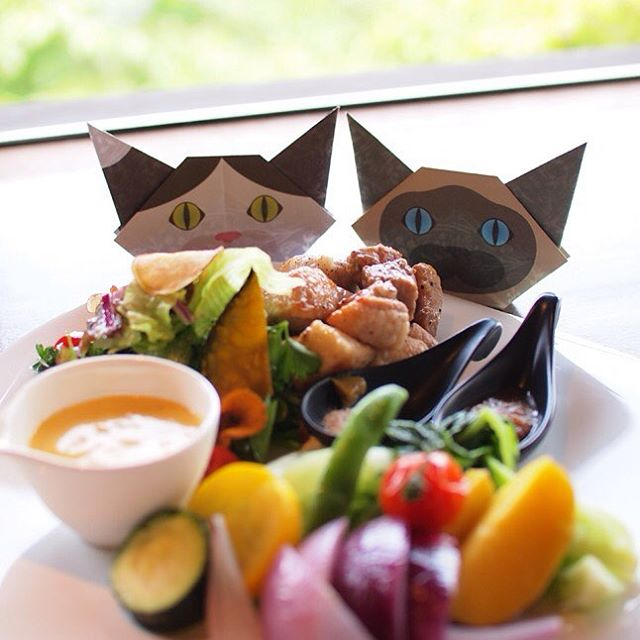 """""""YUMMY""""Everyone sure will enjoy meals with Origami cats!:「美味しそう〜」猫折り紙が一緒だと、子ども達も残さず食べてくれるかな?:☞Check out """"Catchy-boutique"""" in our URL☞Follow: @catchyboutique☞tag: #catchy222 toshare your photo with catchy goods:#origami #折り紙 #cat #neko #ねこ #ネコ"""